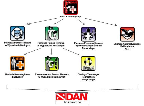 Struktura szkoleń ratowników DAN