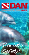 DAN - baner pion Delfiny